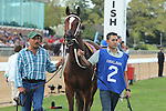 April 10, 2015: #2 Untapable before the running of the Apple Blossom Handicap at Oaklawn Park in Hot Springs, AR. Justin Manning/ESW/CSM
