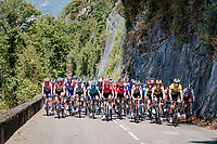 Team Jumbo-Visma controlling the peloton with yellow jersey Wout van Aert (BEL/Jumbo - Visma) in a prominent roll<br /> <br /> Stage 2: Vienne to Col de Porte (135km)<br /> 72st Critérium du Dauphiné 2020 (2.UWT)<br /> <br /> ©kramon