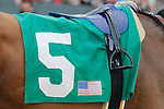 #5 silks that Hoppertunity wore during the running of the Rebel Stakes (Grade II) at Oaklawn Park in Hot Springs, Arkansas-USA on March 15, 2014. (Credit Image: © Justin Manning/Eclipse/ZUMAPRESS.com)