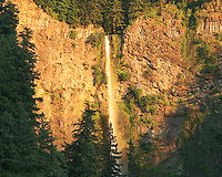 Multnomah Falls in the Columbia River Gorge just East of Portland, OR is seen at sunset with an orange glow.  The falls drops in two major steps, split into an upper falls of 542 feet (165 m) and a lower falls of 69 feet (21 m), with a gradual 9 foot (3 m) drop in elevation between the two, so the total height of the waterfall is given as 620 feet (189 m). Multnomah Falls is the tallest waterfall in the State of Oregon.