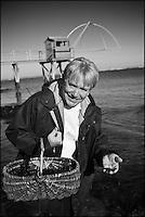 Europe/France/Pays de la Loire/44/Loire-Atlantique/La Plaine-sur-Mer: Philippe Vétélé chef de l'Hôtel-Restaurant: Anne de Bretagne, port de la Gravette  à la pêche à pied [Non destiné à un usage publicitaire - Not intended for an advertising use]