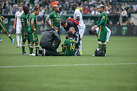 Portland, Oregon - Sunday September 22, 2019: Andres Flores receives treatment on the field after being kicked in the head during a regular season game between Portland Timbers and Minnesota United at Providence Park on September 22, 2019 in Portland, Oregon.