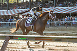 #10 Channel Cat wins the Bowling Green Stakes ridden by Luis Saez July 27, 2019 : during racing at Saratoga Race Course in Saratoga Springs, New York. Robert Simmons/Eclipse Sportswire/CSM