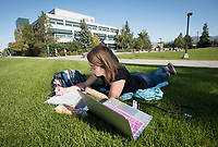 Health Sciences Junior Megan Hoover studies on UAA's Cuddy Quad.