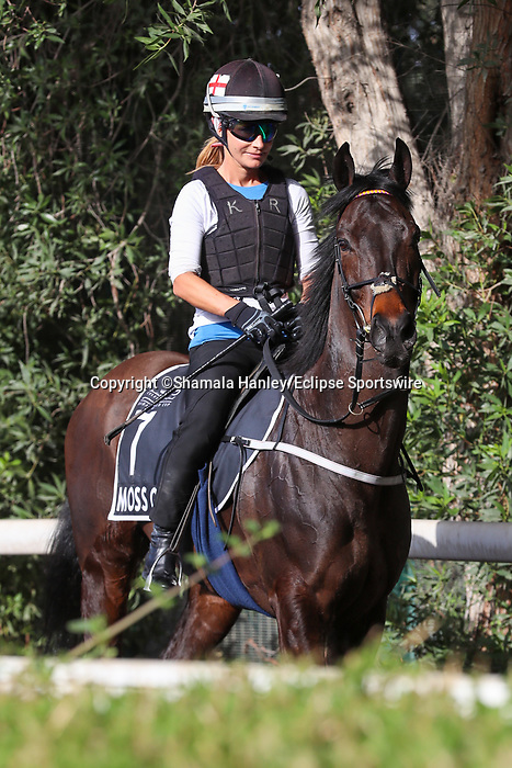 March 25, 2021: Al Quoz Sprint contender Moss Gill (IRE) trains on the track for trainer Edward Bethell at Meydan Racecourse, Dubai, UAE.<br /> Shamela Hanley/Eclipse Sportswire/CSM