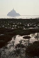 Europe/France/Normandie/Basse-Normandie/50/Manche/Env Saint-Michel-de-Montjoie: Le Mont Saint-Michel et sa baie