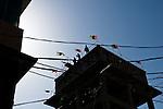 La veille des élections, les drapeaux du PPP flottent en haut d'une tour désaffectée dans un quartier de Rawalpindi.