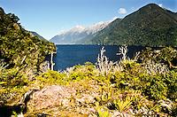 Lake MacKerrow on Hollyford Track - Fiordland NP, Southland, New Zealand