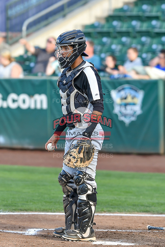 Joel Diaz (5) catcher of the Grand Junction Rockies on defense against the Ogden Raptors in Pioneer League action at Lindquist Field on August 26, 2016 in Ogden, Utah. The Raptors defeated the Rockies 6-5. (Stephen Smith/Four Seam Images)