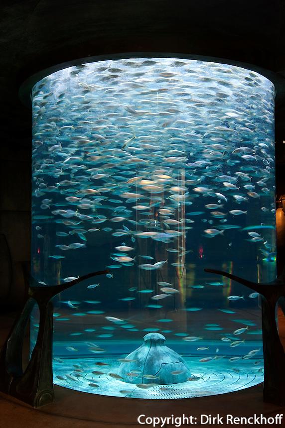 Vereinigte arabische Emirate (VAE), Dubai, Aquarium im Hotel Atlantis auf der Palm Jumeirah
