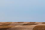 Farmland in southwestern Manitoba, Canada, in the spring.