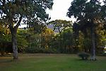 Embassy villa garden, Zomba Mountain