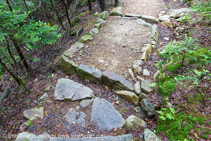 Open stone culvert (water bar) along the Mt Tecumseh Trail in Waterville Valley, New Hampshire USA during the summer months.