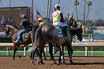 """ARCADIA, CA  May 28:  #5 Hunt, ridden by Flavien Prat, in the post parade of the Shoemaker Mile (Grade l), Breeders'Cup """"Win and You're in Mile Division"""" on May 28, 2018, at Santa Anita Park in Arcadia, CA. (Photo by Casey Phillips/Eclipse Sportswire/Getty Images)"""