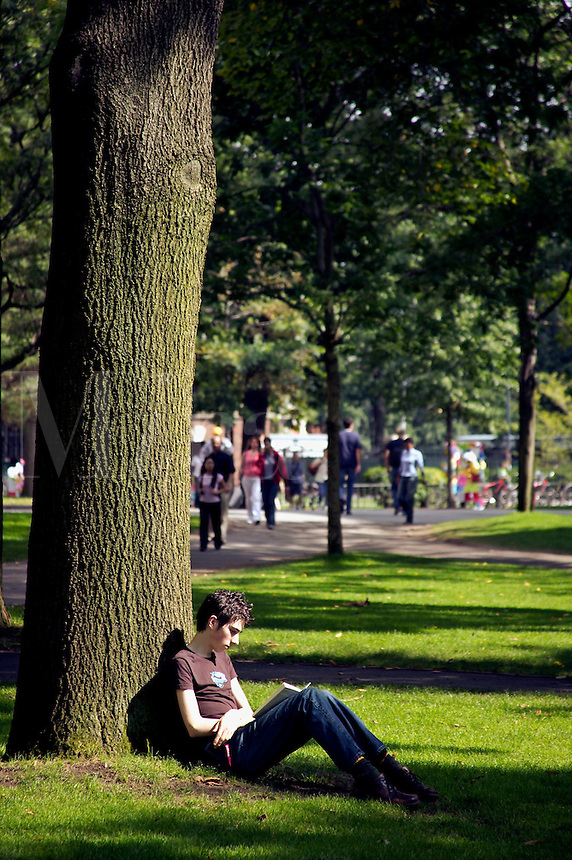 Student reclining against tree reading in Harvard Yard, Harvard University, Cambridge, MA