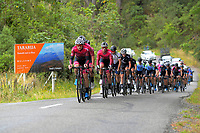 Day one of the NZ Cycle Classic UCI Oceania Tour in Wairarapa, New Zealand on Wednesday, 15 January 2020. Photo: Dave Lintott / lintottphoto.co.nz
