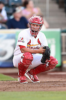 Springfield Cardinals catcher Travis Tartamella (4) warms up the pitcher in between innings during a game against the Frisco Rough Riders on June 1, 2014 at Hammons Field in Springfield, Missouri.  Springfield defeated Frisco 3-2.  (Mike Janes/Four Seam Images)