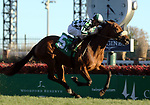 LOUISVILLE, KY -NOV 25: Tropical Wave (Brian J. Hernandez Jr.) wins the 8th race at Churchill Downs, Louisville, Kentucky, a maiden race for two year old fillies on the turf. Owner G. Watts Humphrey Jr. and W. S. Farish, trainer George R. Arnold II. By Lemon Drop Kid x New Wave, by Tale of the Cat. (Photo by Mary M. Meek/Eclipse Sportswire/Getty Images)