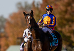November 6, 2020: Battleground and Ryan Moore at the   Breeders' Cup Juvenile Turf at Keeneland Racetrack in Lexington, Kentucky on November 6, 2020. Alex Evers/Eclipse Sportswire/Breeders Cup