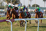 February 29, 2020: #5 Sombeyay with jockey Flavien Prat on board, wins the Canadian Turf Stakes G3 on February 29th, 2020 at Gulfstream Park in Hallandale Beach, Florida. LizLamont/Eclipse Sportswire/CSM