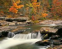Fall color along Stony Clove Creek; Catskill Park & Preserve, NY