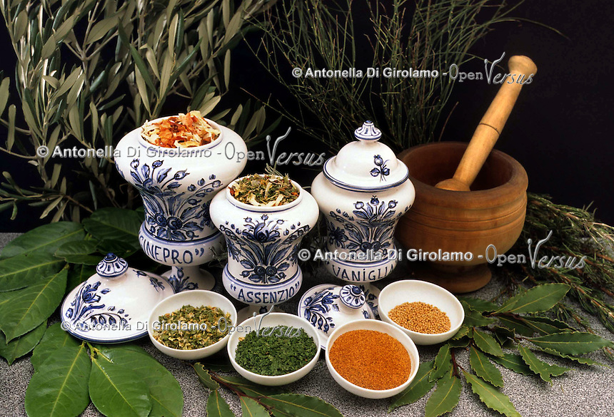 Erbe e spezie. Herbs and spices...