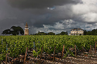 Europe/France/Aquitaine/33/Gironde/Bégadan: Château: La Tour de By - Cru Bourgeois- AOC Médoc