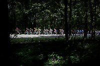 yellow jersey / GC leader Mike Teunissen (NED/Jumbo-Visma) & team rolling through the forest<br /> <br /> Stage 3: Binche (BEL) to Épernay (FRA) (214km)<br /> 106th Tour de France 2019 (2.UWT)<br /> <br /> ©kramon