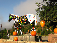 A local icon, Old Paint, all 'dressed up' for Halloween at the east end of town - Half Moon Bay, California.