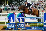 October 17, 2021: Oliver Townend (GBR), aboard Cooley Master Class, competes during the Stadium Jumping Final at the 5* level g the Maryland Five-Star at the Fair Hill Special Event Zone in Fair Hill, Maryland on October 17, 2021. Jon Durr/Eclipse Sportswire/CSM
