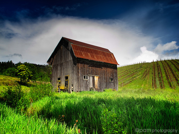 Old barn in Oregon