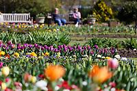 2021 04 02 sunshine at the Botanical Gardens in Swansea, Wales, UK