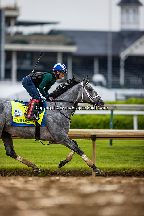April 29, 2021: Essential Quality gallops in preparation for the Kentucky Derby at Churchill Downs in Louisville, Kentucky on April 29, 2021. EversEclipse Sportswire/CSM
