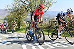 The peloton including Warren Barguil (FRA) Team Arkea-Samsic climb La Redoute during the 107th edition of Liege-Bastogne-Liege 2021, running 259.1km from Liege to Liege, Belgium. 25th April 221.  <br /> Picture: Serge Waldbillig | Cyclefile<br /> <br /> All photos usage must carry mandatory copyright credit (© Cyclefile | Serge Waldbillig)