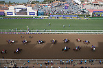 DEL MAR, CA - NOVEMBER 03: Horses walk the track before setting up for the Breeders' Cup Las Vegas Dirt Mile on Day 1 of the 2017 Breeders' Cup World Championships at Del Mar Thoroughbred Club on November 3, 2017 in Del Mar, California. (Photo by Ting Shen/Eclipse Sportswire/Breeders Cup)