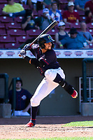Cedar Rapids Kernels outfielder Gilberto Celestino (8) at bat during a Midwest League game against the Peoria Chiefs on May 26, 2019 at Perfect Game Field in Cedar Rapids, Iowa. Cedar Rapids defeated Peoria 14-1. (Brad Krause/Four Seam Images)