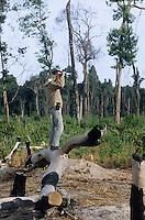 CAMBODIA Mekong River, illegal deforestion of rainforest / KAMBODSCHA Mekong Fluß, illegale Abholzung von Regenwald, GIZ Mitarbeiter der Mekong River Kommission bei Inspektion einer illegal abgeholzten Waldflaeche