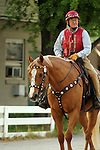 """LOUISVILLE, KY - APRIL 25: William """"Jinks"""" Fires, trainer of Kentucky Derby contender Discreetness, on his stable pony Skippy who wears Western gear. (Photo by Mary M. Meek/Eclipse Sportswire/Getty Images)"""