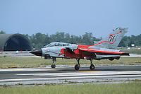 "- Italian Air Force, strike aircraft Tornado IDS ""special color"" of 6th Wing....- Aeronautica Militare Italiana, aereo da attaccoTornado IDS ""special color"" 6° Stormo......"