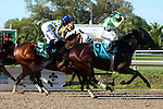 March 28, 2015  Call Me George (James Graham #9) is an upset winner over Albano (Kerwin D. Clark #6) and Moreno (Joseph Talamo #5) in the G2 New Orleans Handicap. ©Mary M. Meek/ESW/CSM