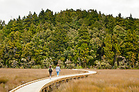 Two women on a boardwalk over the wetland in Okarito - Westland National Park, West Coast, New Zealand