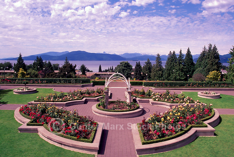 "Vancouver, BC, British Columbia, Canada - Rose Garden at University of British Columbia (UBC) overlooking ""English Bay"" and ""Coast Mountains"""