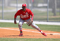 March 19, 2010:  First Baseman Hector Alvarez of the St. Louis Cardinals organization during Spring Training at the Roger Dean Stadium Complex in Jupiter, FL.  Photo By Mike Janes/Four Seam Images