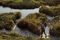 Europe/France/Auvergne/12/Aveyron: Aubrac - Pêche à la truite au fouet et à la mouche