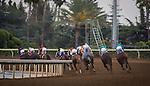June 27, 2015: Scenes from Gold Cup Day at Santa Anita Park in Arcadia, California. Zoe Metz/ESW/CSM