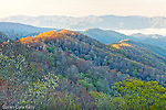 Springtime view of the Oconaluftee River Valley from the Webb Overlook, Great Smoky Mountains National Park, NC, USA