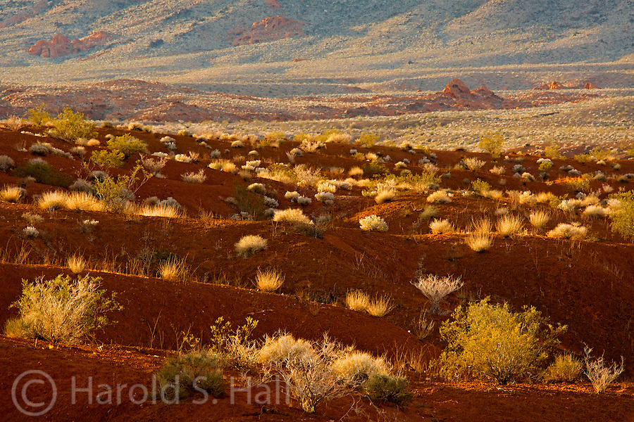 Valley of Fire State Park in Nevada awakes to a new day.