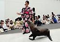 Shakitto sea lion Aqua Park Shinagawa