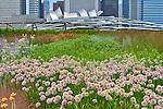 Jay Pritzker Pavilion, Millennium Park, Chicago, Illinois, designed by National Medal of Art winner Frank Gehry.