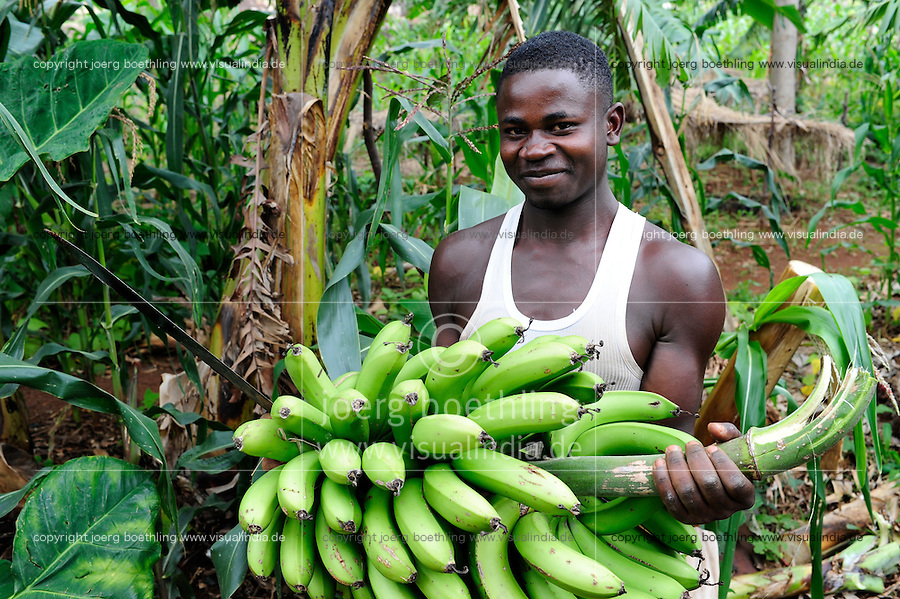 TANZANIA Bukoba, farmer with harvested bananas / TANSANIA Bukoba, Bauer mit geernteten Bananen, Kochbananen